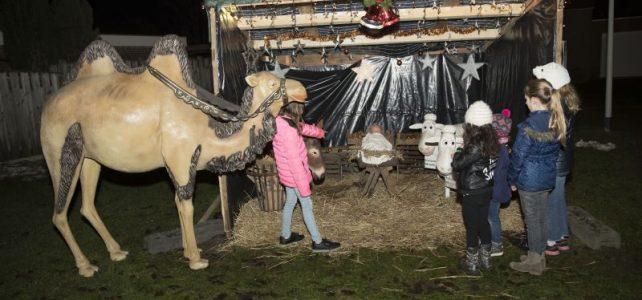 Kerststallen bewonderen in de Hei